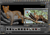 Houdini 3D Animation Tools