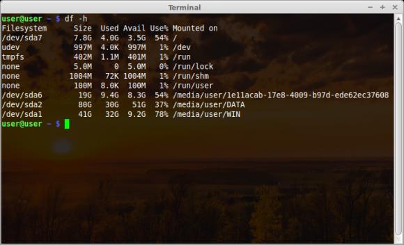 Mint 14 Xfce - Terminal