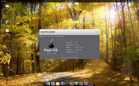 Pear Linux 7 - About this computer OS