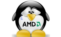 AMD-TUX