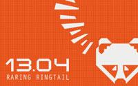 2 pregleda Ubuntu 13.04 Raring Ringtail